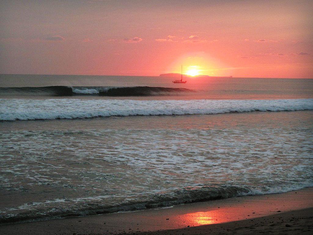 casa-selvatica-surf-4